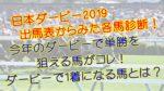日本ダービー(東京優駿)2019 単勝&複勝購入視点による各馬診断!