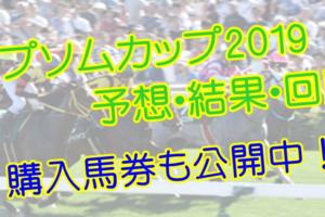 エプソムカップ2019 単勝・複勝予想・結果・回顧 【馬券公開】