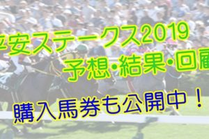 平安ステークス2019 単勝・複勝予想・結果・回顧 【馬券公開】