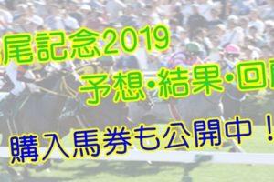 鳴尾記念2019 単勝・複勝予想・結果・回顧 【馬券公開】