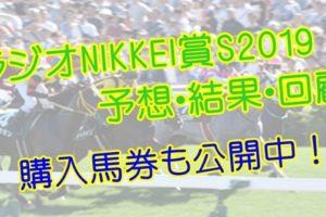 ラジオNIKKEI賞2019 単勝・複勝予想・結果・回顧 【馬券公開】