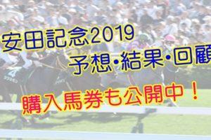 安田記念2019 単勝・複勝予想・結果・回顧 【馬券公開】