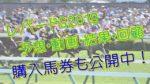 レパードステークス2019単勝複勝予想結果動画