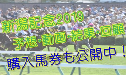 新潟記念2019単勝複勝予想結果動画
